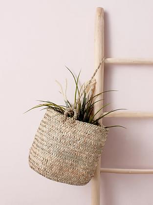 Plant Hanging Basket