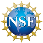 logo_nsf1.png