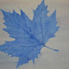 Canada 6.JPG