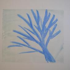 Arbre bleu 4.JPG