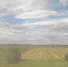 Peinture de paysage 8.jpg