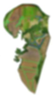 mapa_cercas_vivas.png