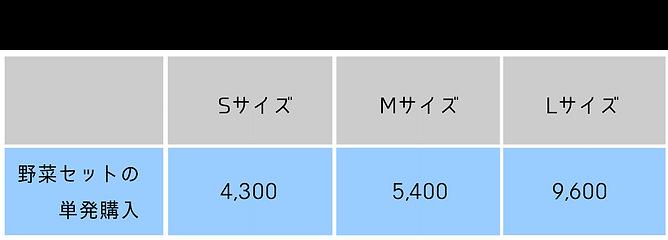 野菜料金表 野菜単発のコピー.png