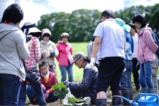 岡本さん畑2.jpg