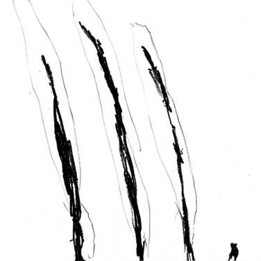 Trees 30x30cm oil pastel/paper 2014