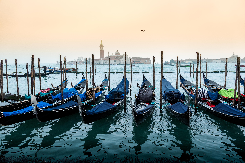 Venice Gondola Beauty Parade
