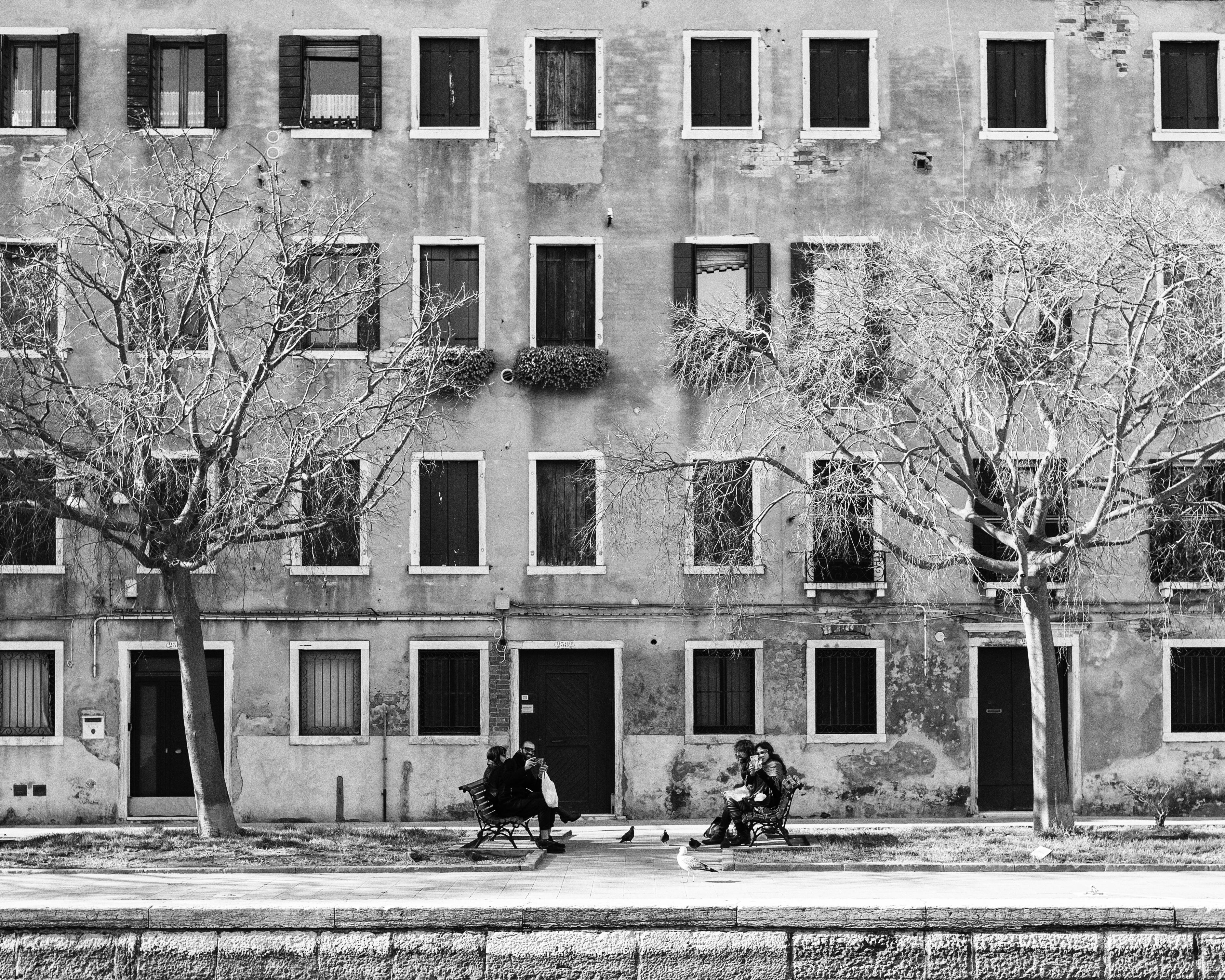 Venetian Symmetry