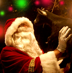 Santa-With-Goats.png