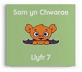 Llyfr 7