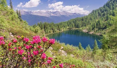 Lago di Barco.jpg