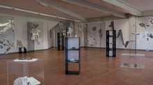 Exhibition at the Naples Science Canter