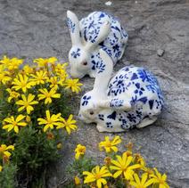 bunnies 1.jpg