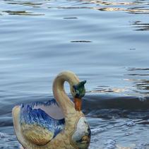 swan-lake.jpeg