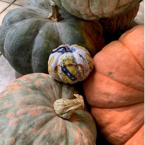 hardshell-pumpkin.jpg