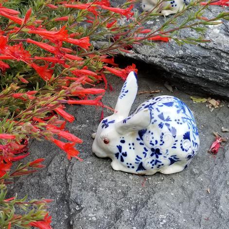 bunnies 2.jpg