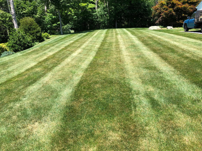 Portillo Landscaping LLC