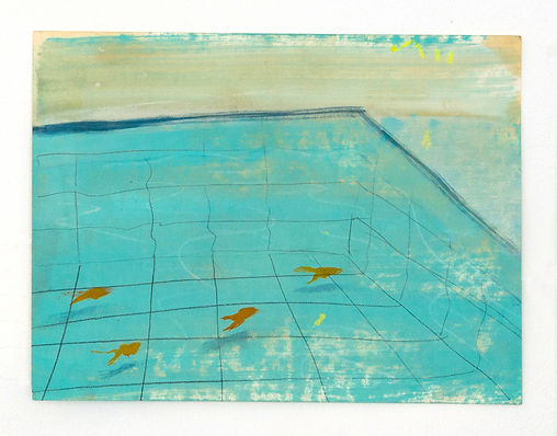 gold fish in the swimming pool.jpg