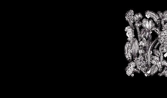 flower_bg2.png