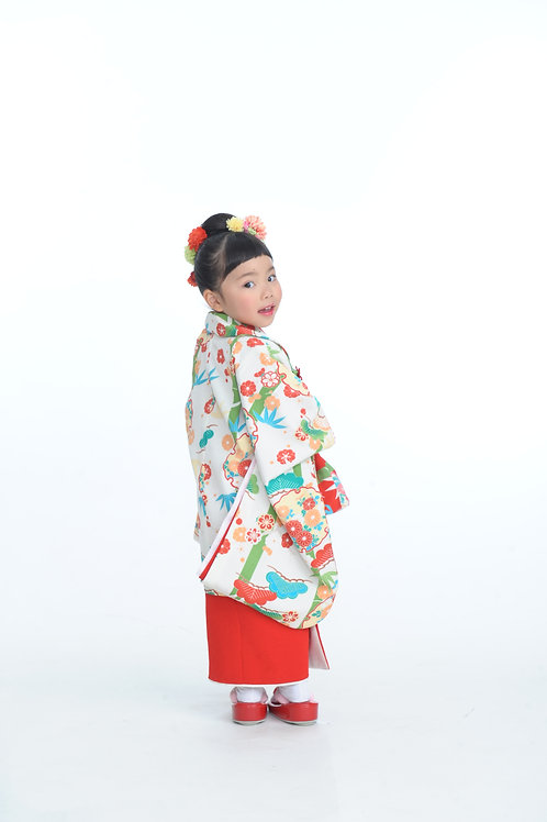 HIFU (JAPANESE MODERN PATERN)