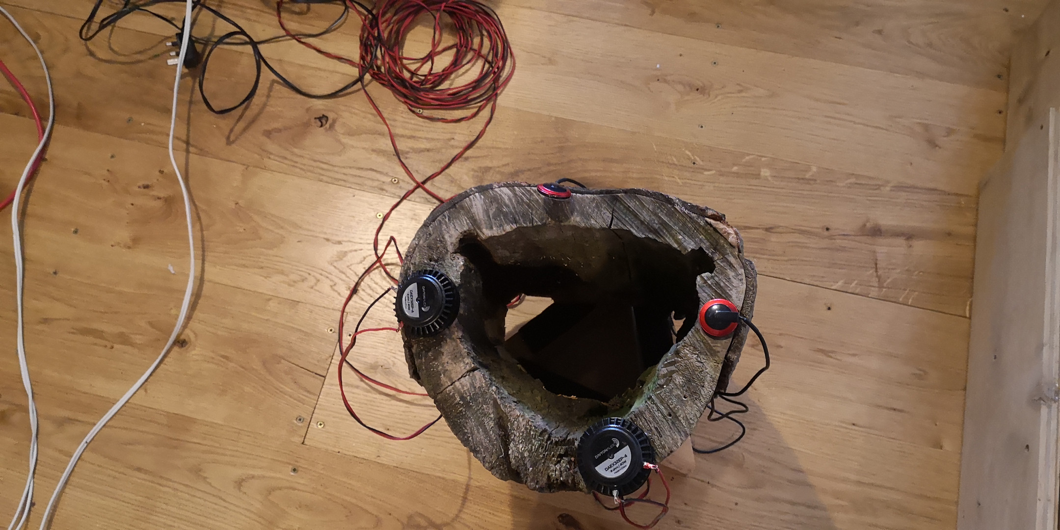Hollow log receiving sound from orb via transducers. Sending sound via contact microphones.