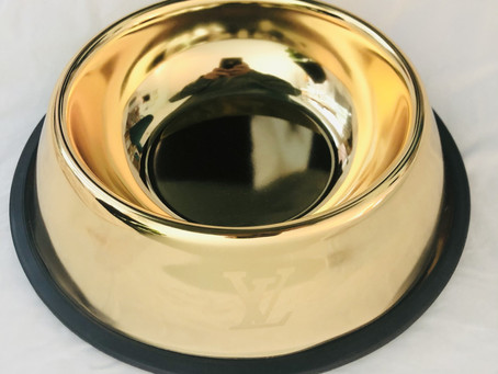 Chase and Chew LV Gold Pet Bowl Review
