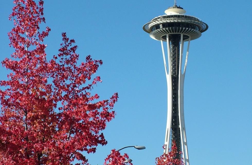 Fall in Seattle