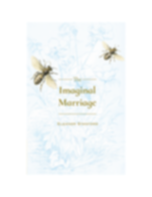 Imaginal Marriage cover.png