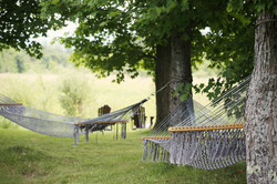life-of-pix-free-stock-photos-Countryside-trees-hammock-chill-Relaxation.jpg