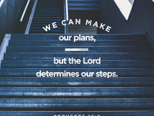 // The Lord Determines Our Steps //