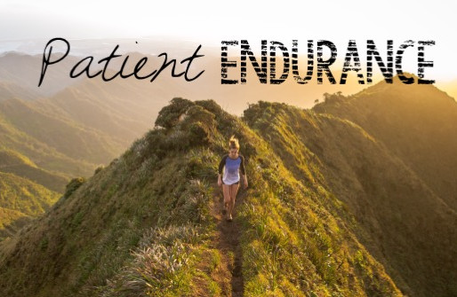 Patient Endurance // 19 Days Until Undivided Event!