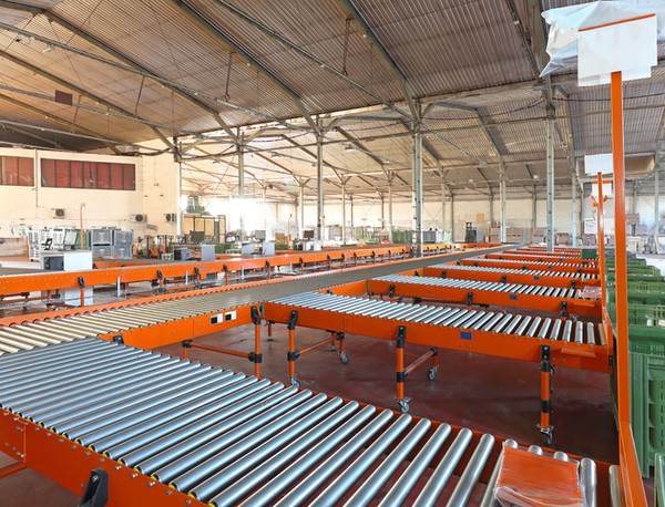 Roller Conveyors Warehouse