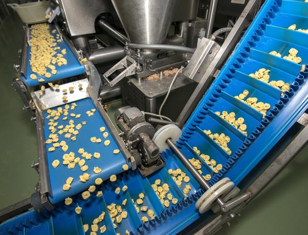 Flat Belt Conveyor - Food Conveyor