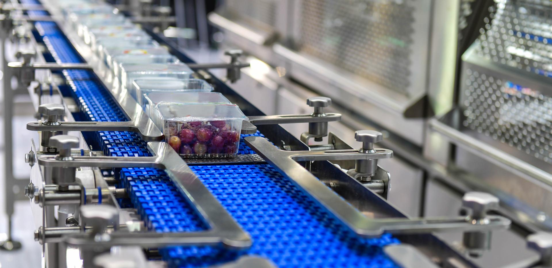 Modular Conveyor Belt - Food Indsutry
