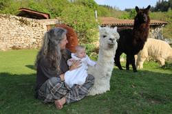 Gite Ardèche animaux lilodahu820