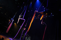 Aerial Dragons Into the Wild at STRAZ-309