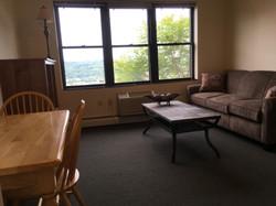 Apartment E1 F1 living room