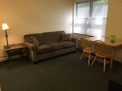Apartment B1 C1 living room