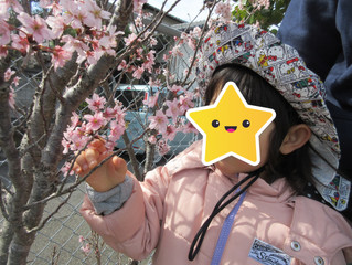 じゅにあ ふたば🐣春