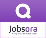 Locuri de muncă.png