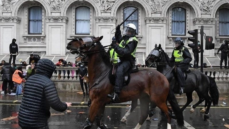 Stop the police using horses during the BLM Protests