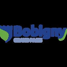 Bobigny 300.png
