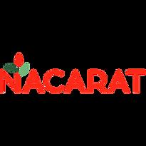 NACARAT 2021 300.png