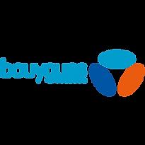 Bouygues Télécom 300.png