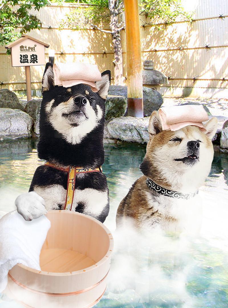 いい湯だなG.jpg