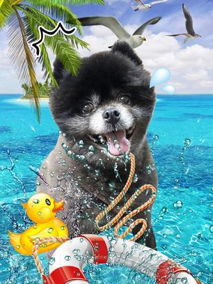 s南の島で水遊び.jpg