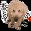 Thumbnail: 喜怒哀楽セット1 ↑