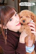kainushi_pet_04.jpg