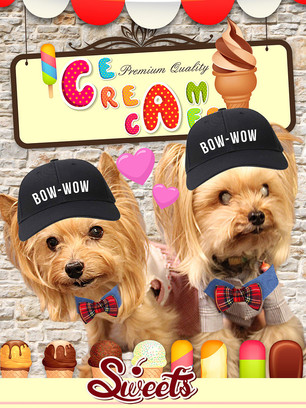 sアイスクリーム屋さん.jpg