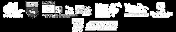 Bande Logos website.png