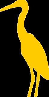Héron_jaune.png